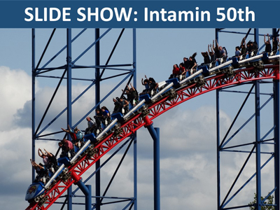 Intamin50th_Btn